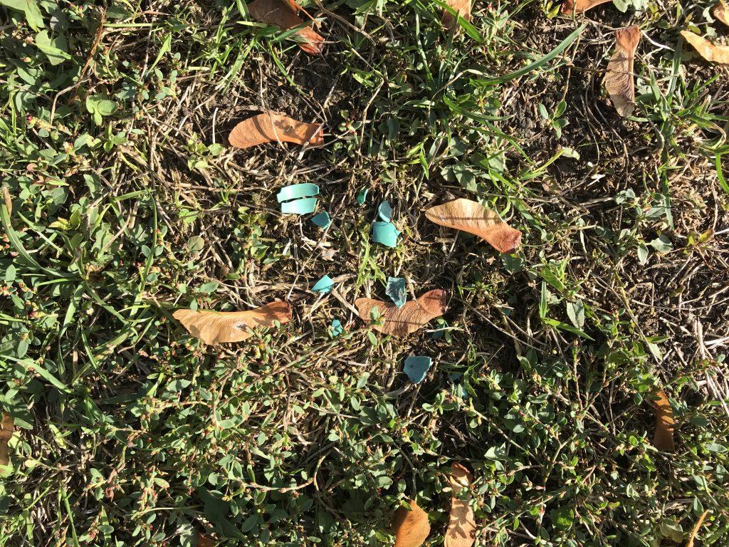 Plastikpartikel in der Erde