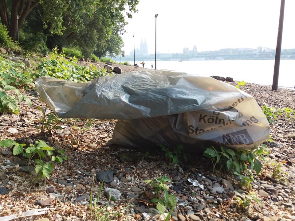 Plastikmüll am Rhein