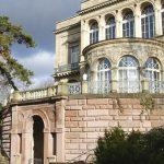 Herbst-Cleanup mit myconics an der Villa Berg