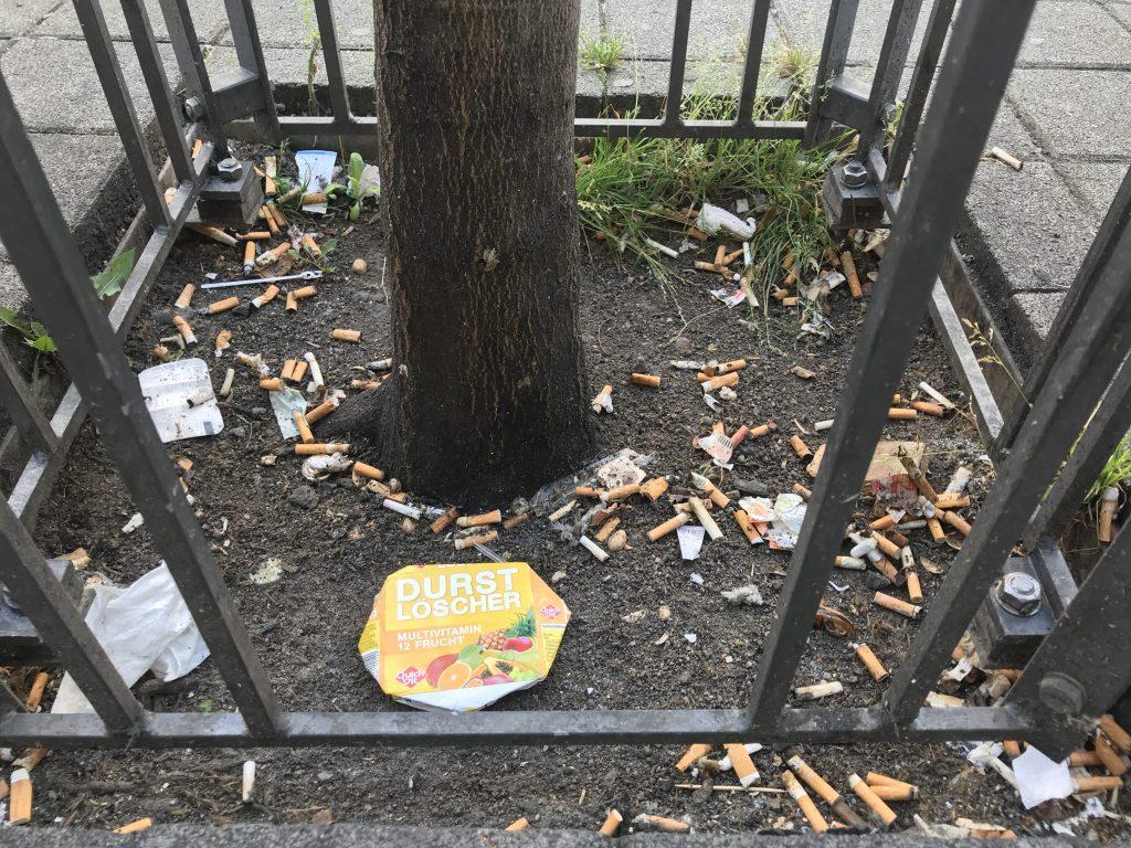 Zigarettenkippen an Baum