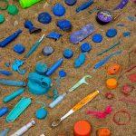 Wenn Kinder Plastik aus dem Wald räumen, werden sie zu Plastik-Piraten!
