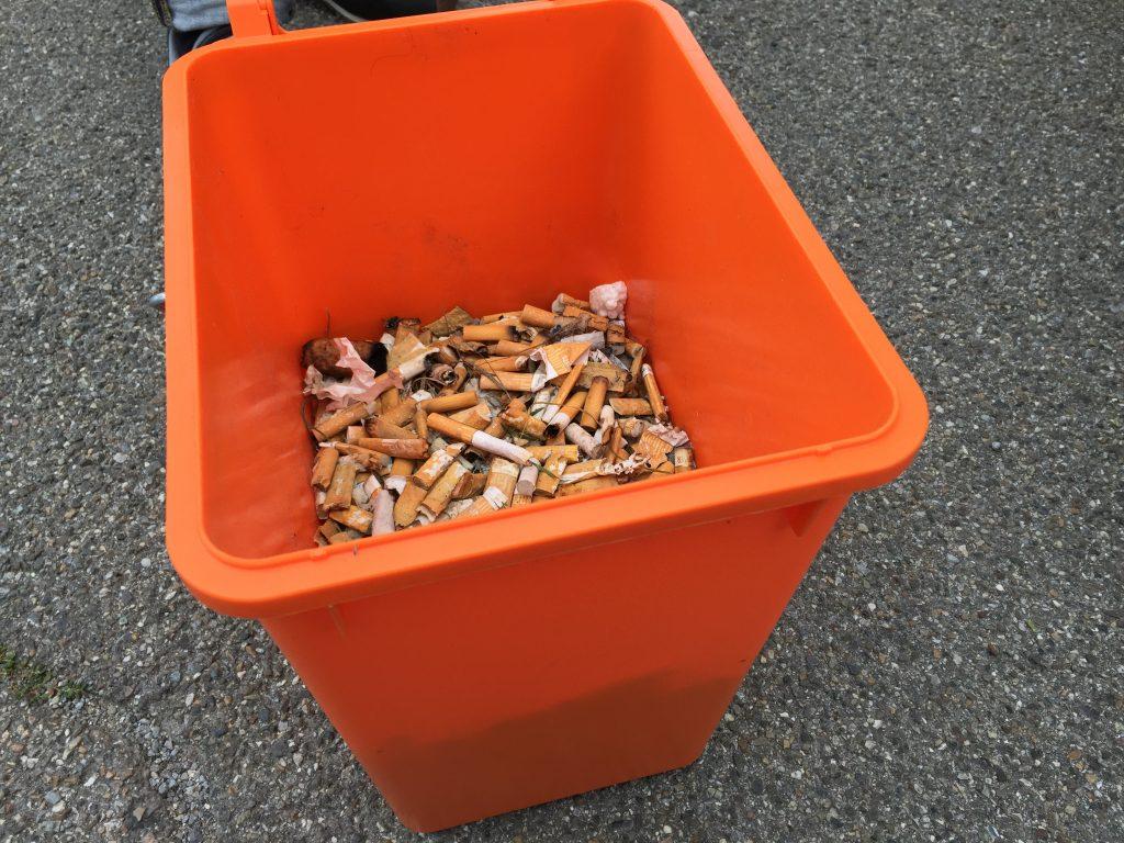 zigaretten kippen-grundwasser