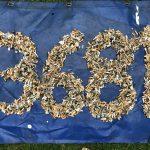 Bereits 13. Organisation aus Bayern wird Netzwerkpartner: Cleanup Langquaid